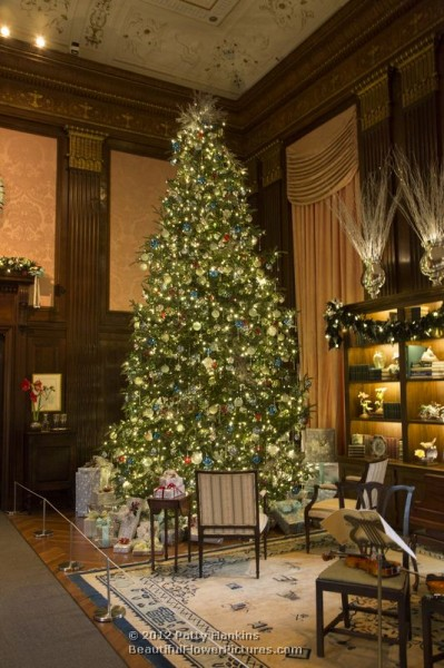 christmas at longwood gardens the music room and