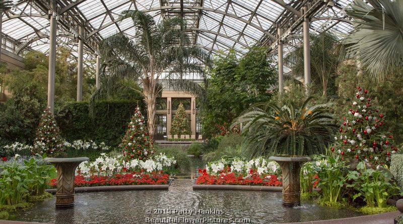 Christmas in the Conservatory at Longwood Gardens – 2013 ...