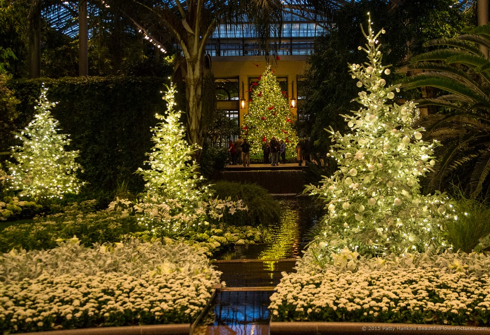 Christmas In The Conservatory At Night Longwood Gardens 2014 Beautiful Flower Pictures Blog