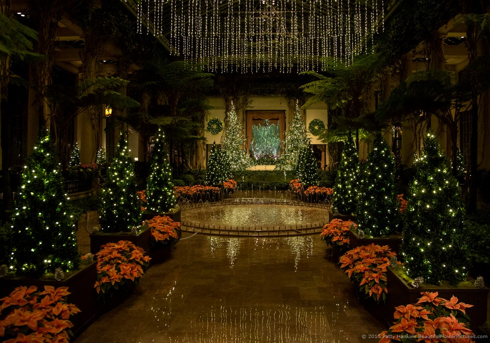 Christmas In The Conservatory At Night Longwood Gardens
