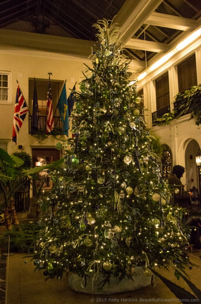 Christmas at du pont house longwood gardens 2015 for Dupont house