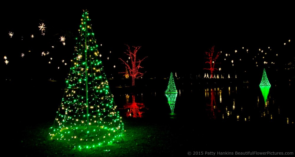 outdoor lights christmas at longwood gardens 2015 patty hankins