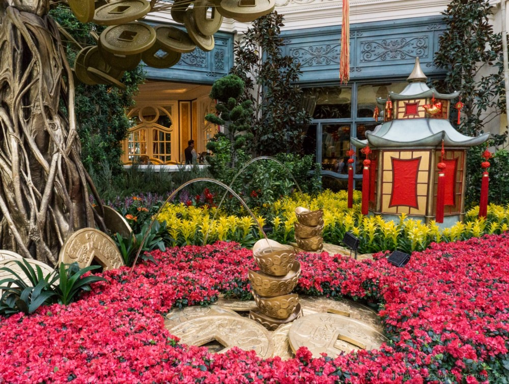 Chinese New Year In The Botanical Garden At The Bellagio Hotel In Las Vegas  © 2016