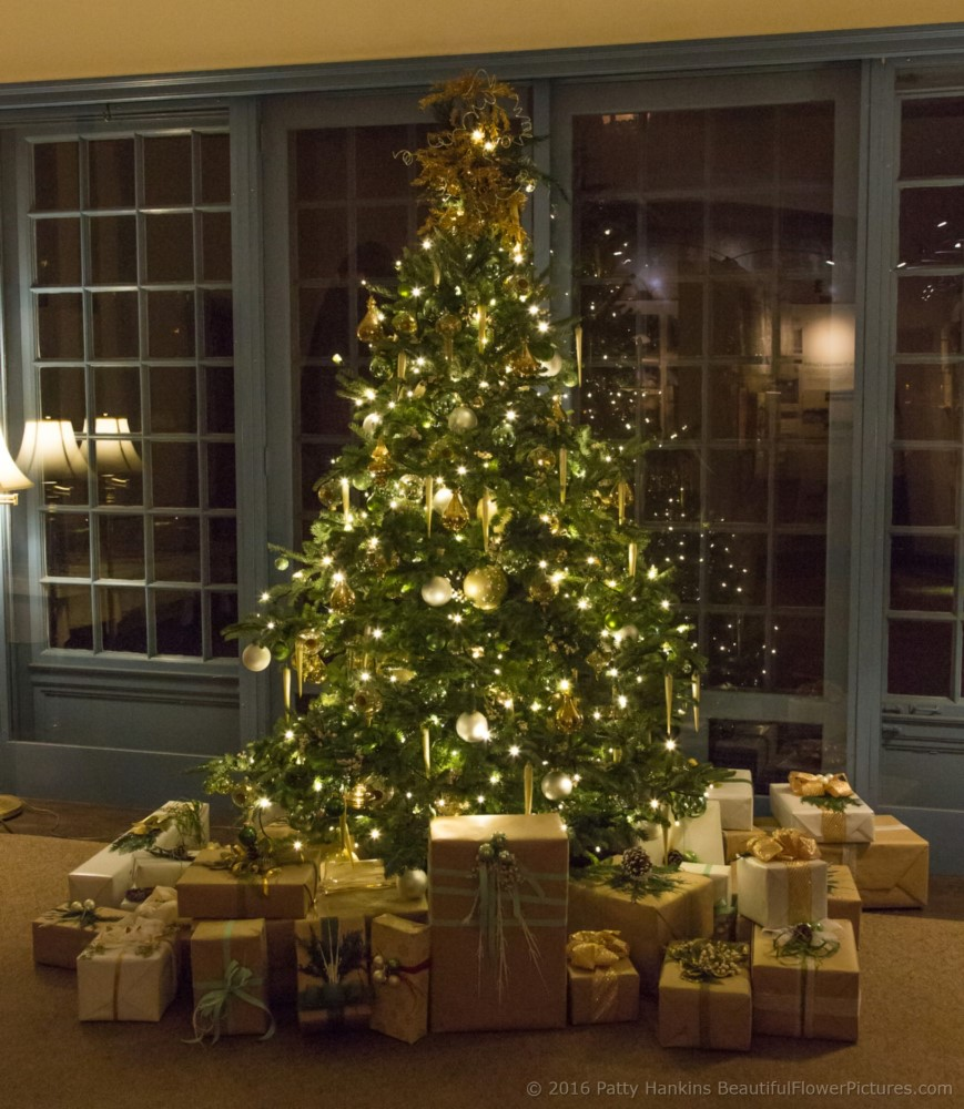 Christmas at the du pont house longwood gardens 2016 for Dupont house