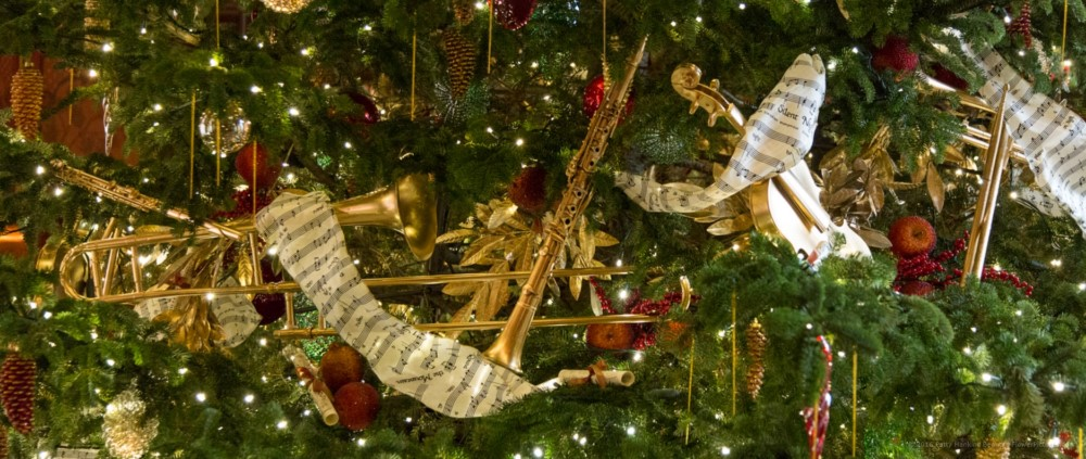 Christmas at Longwood Gardens 2016 :: Beautiful Flower Pictures Blog