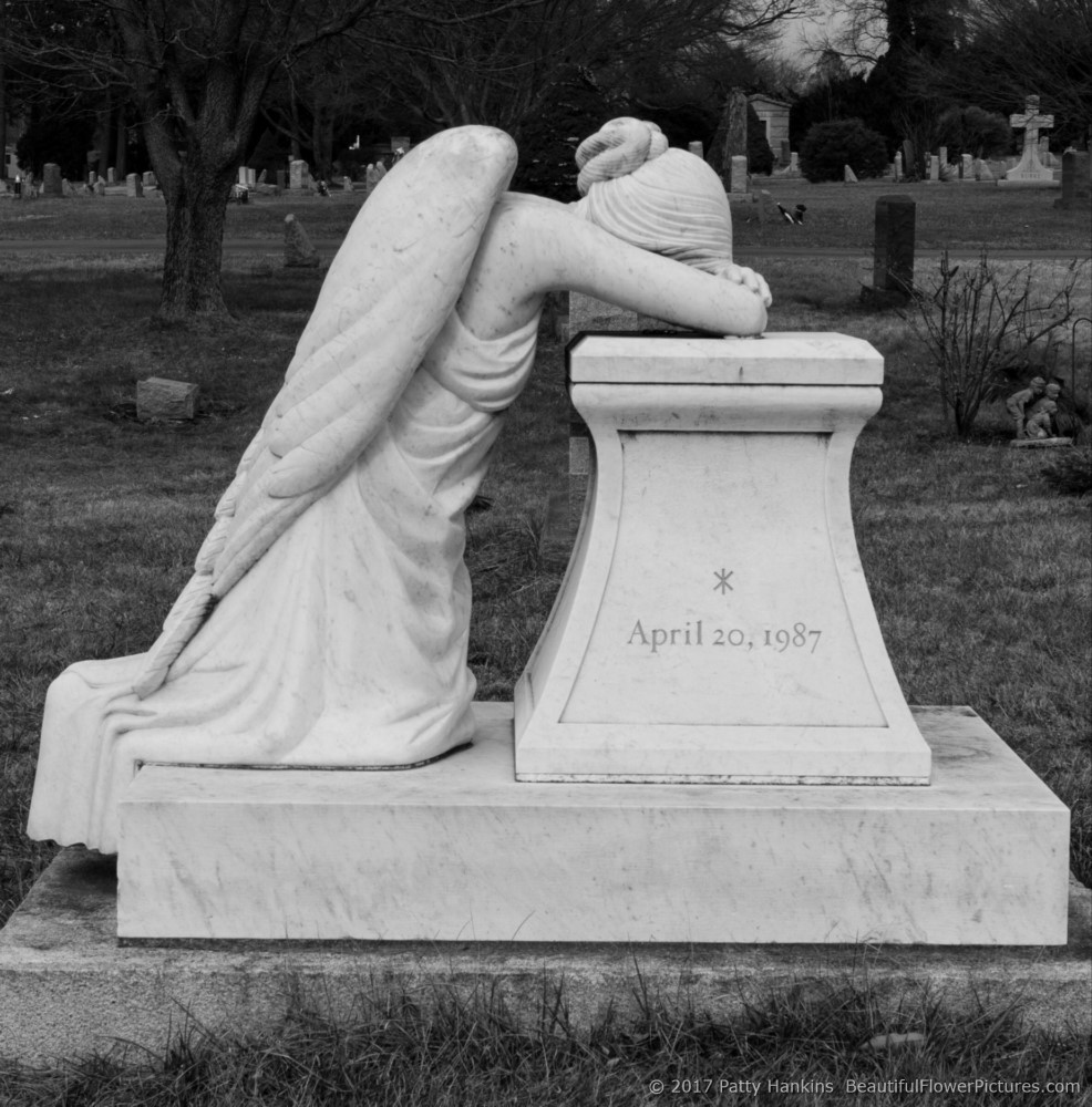 Cemetery Angel, Longwood Cemetery, Kennett Square, PA © 2017 Patty Hankins