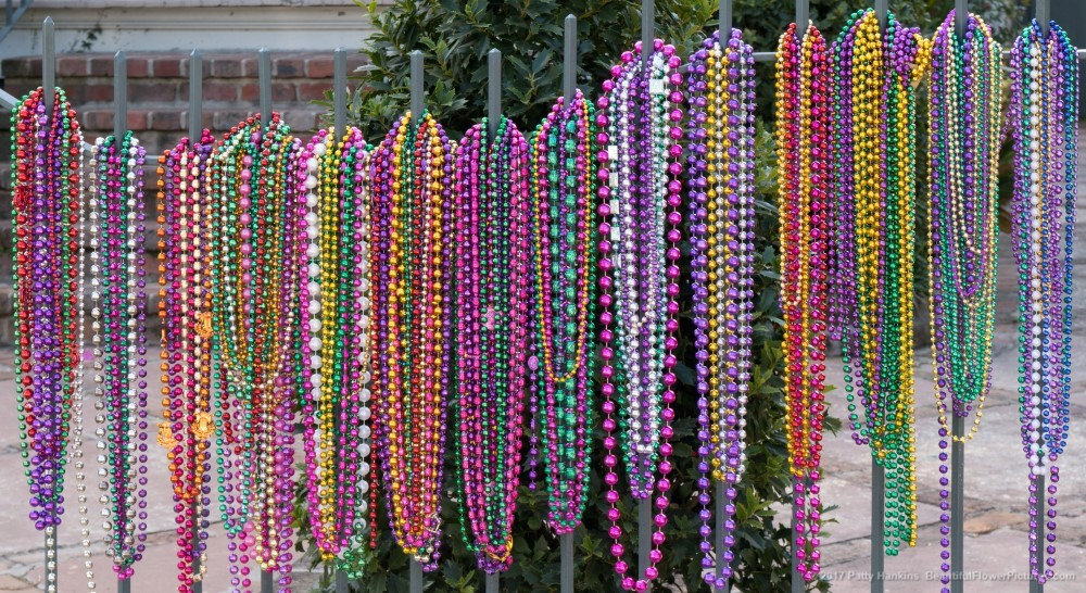 Mardi Gras Beads on a Fence, Garden District, New Orleans ©2017 Patty Hankins