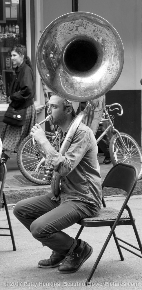 Tuba Player, French Quarter, New Orleans ©2017 Patty Hankins