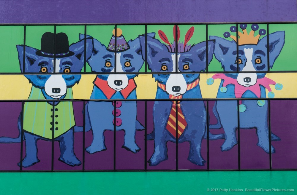 George Rodrigue;s Blue Dogs, New Orleans © 2017 Patty Hankins