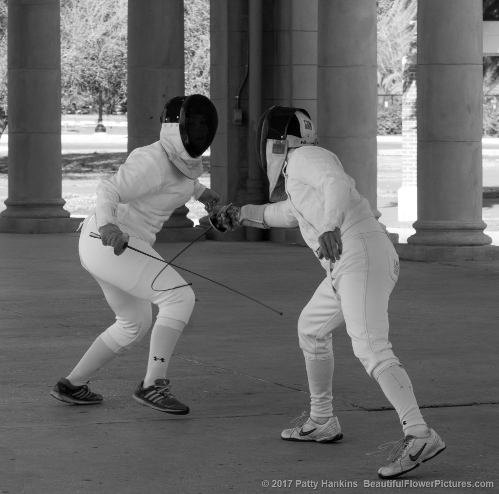 Fencing in the Park, New Orleans © 2017 Patty Hankins