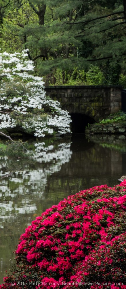 A Visit To Shofuso Japanese House And Gardens :: Beautiful