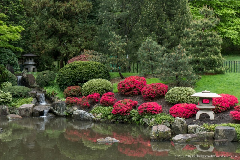 A Visit To Shofuso Japanese House And Gardens Beautiful Flower Pictures Blog