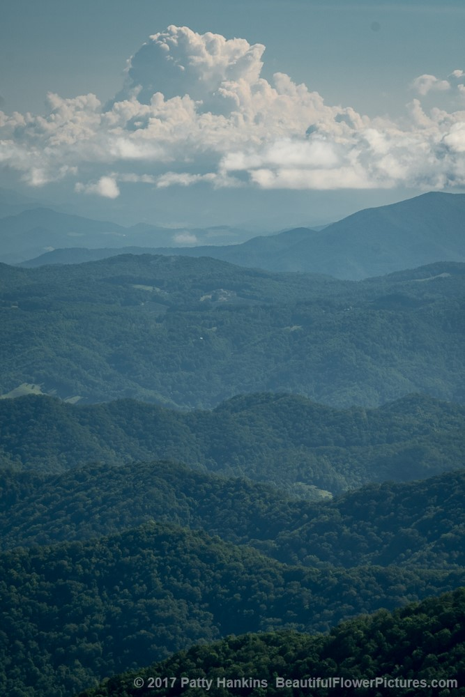Mountains and Clouds in the PIsgah National Forest ©2017 Patty Hankins