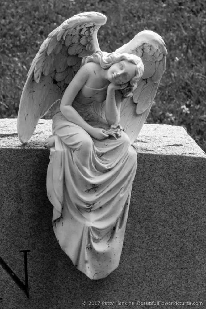 Angel, Hollywood Cemetery, Richmond, Virginia © 2017 Patty Hankins