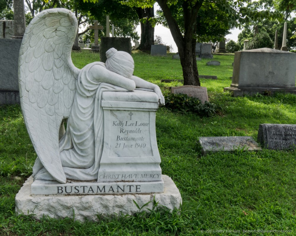 Bustamante Grave,,   Hollywood Cemetery, Richmond, Virginia © 2017 Patty Hankins