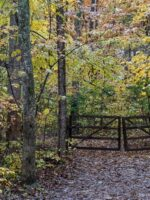 Fall Color at the Museum of Appalachia, Clinton, TN ©2017 Patty Hankins