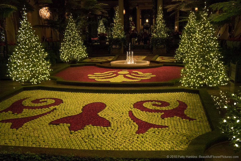 Christmas at longwood gardens 2017 music room and exhibition hall beautiful flower pictures for Longwood gardens christmas 2017