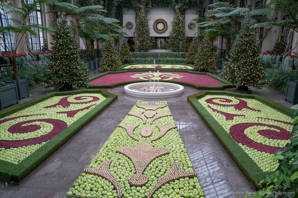 Christmas At Longwood Gardens 2017 Beautiful Flower