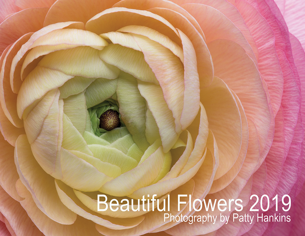 2019 Beautiful Flowers Calendar – Introductory Special ...