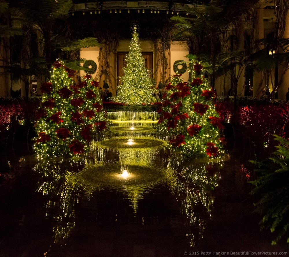 Christmas In The Exhibition Hall Longwood Gardens 2015