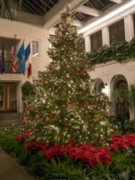 Longwood gardens beautiful flower pictures blog for Longwood gardens christmas 2017